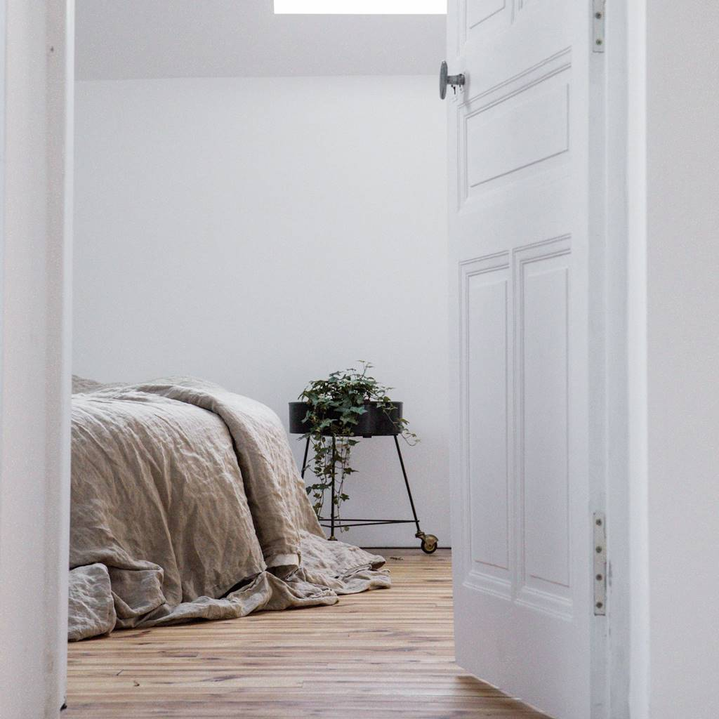 open door into bedroom with mattress and plant