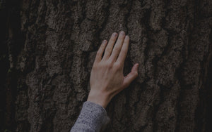 Female in grey sweater with her hand on the bark of a tree