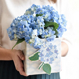 Hydrangea Attachment Lifestyle