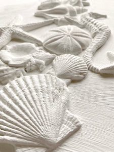 "Sea Shells 6""×10"" IOD MOULDS™ pre-order"
