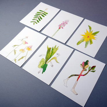 Plantágoras postcards - set of 6