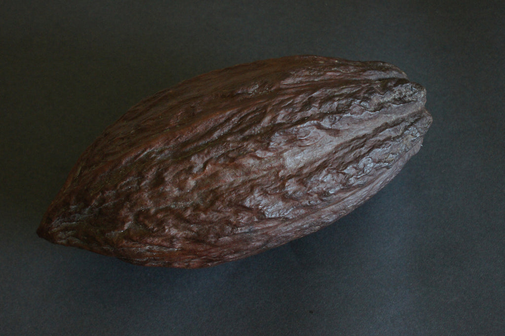 Dried Cocoa Pods