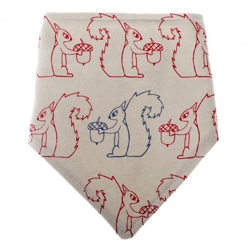 Squirrel Dribble Bib