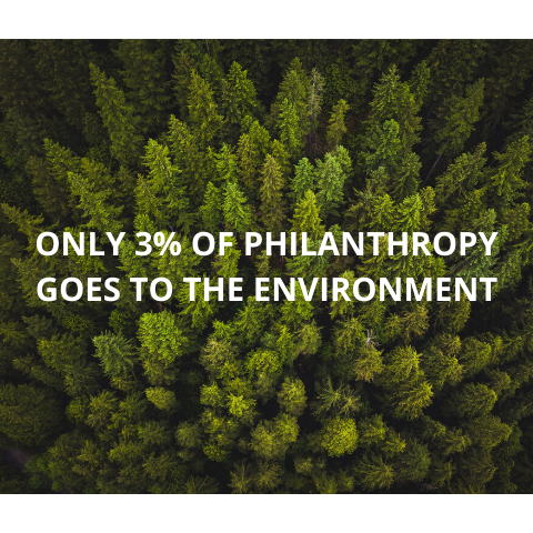 3 percent of philanthropy goes towards the environment