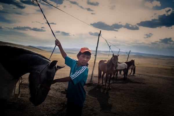 PhotTimothy Fadek, A young boy tends to horses in Mongolia
