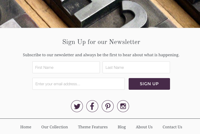 Responsive theme newsletter signup