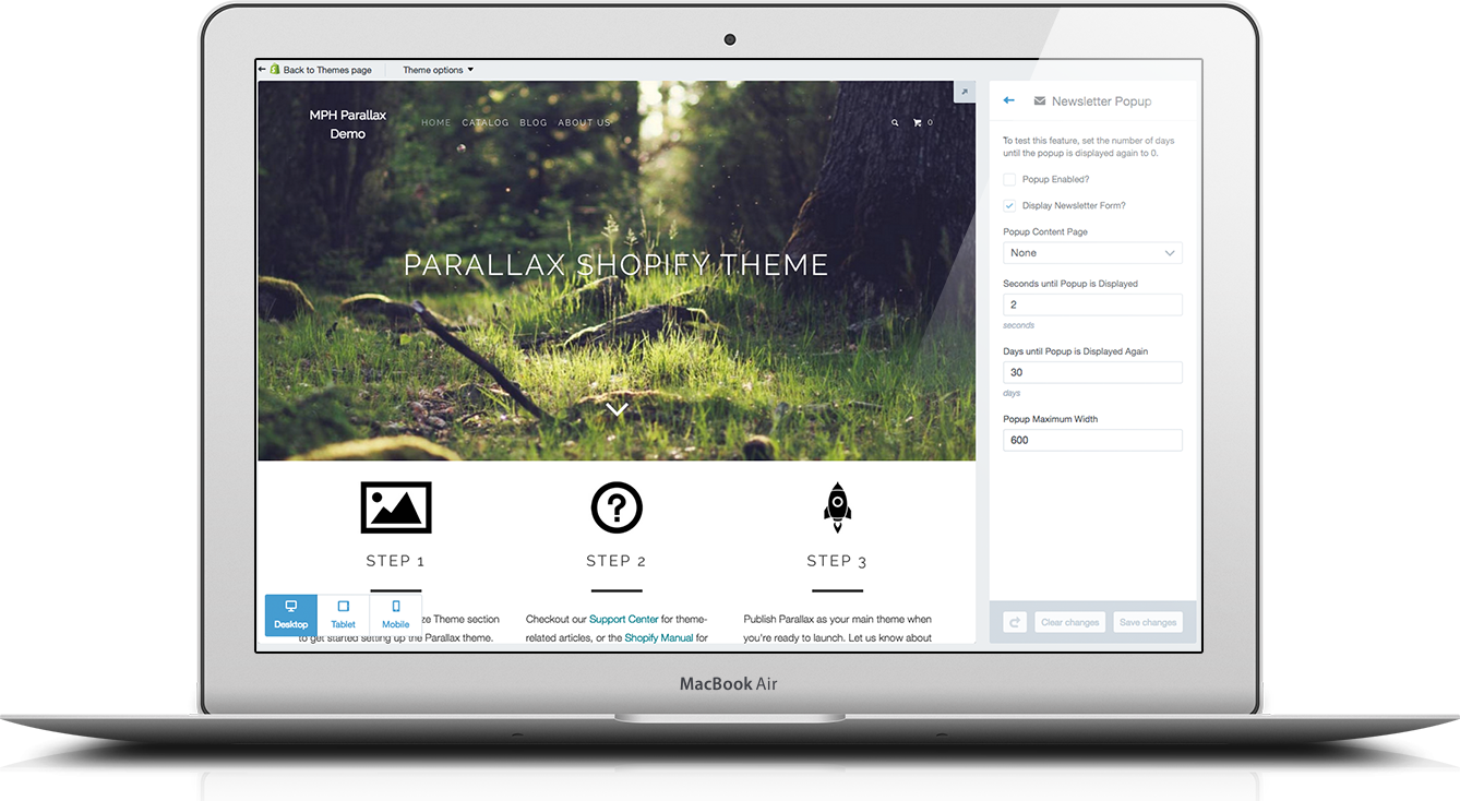 Shopify theme newsletter subscription form theme options
