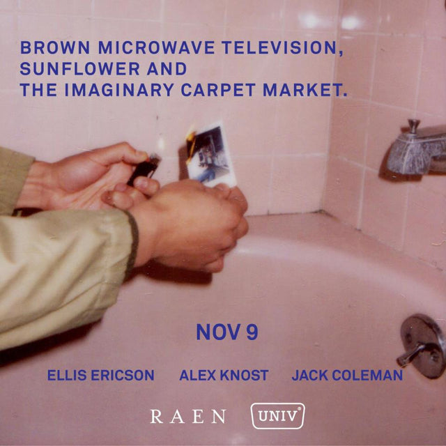 Brown Microwave Television, Sunflower, and the Imaginary Carpet Market