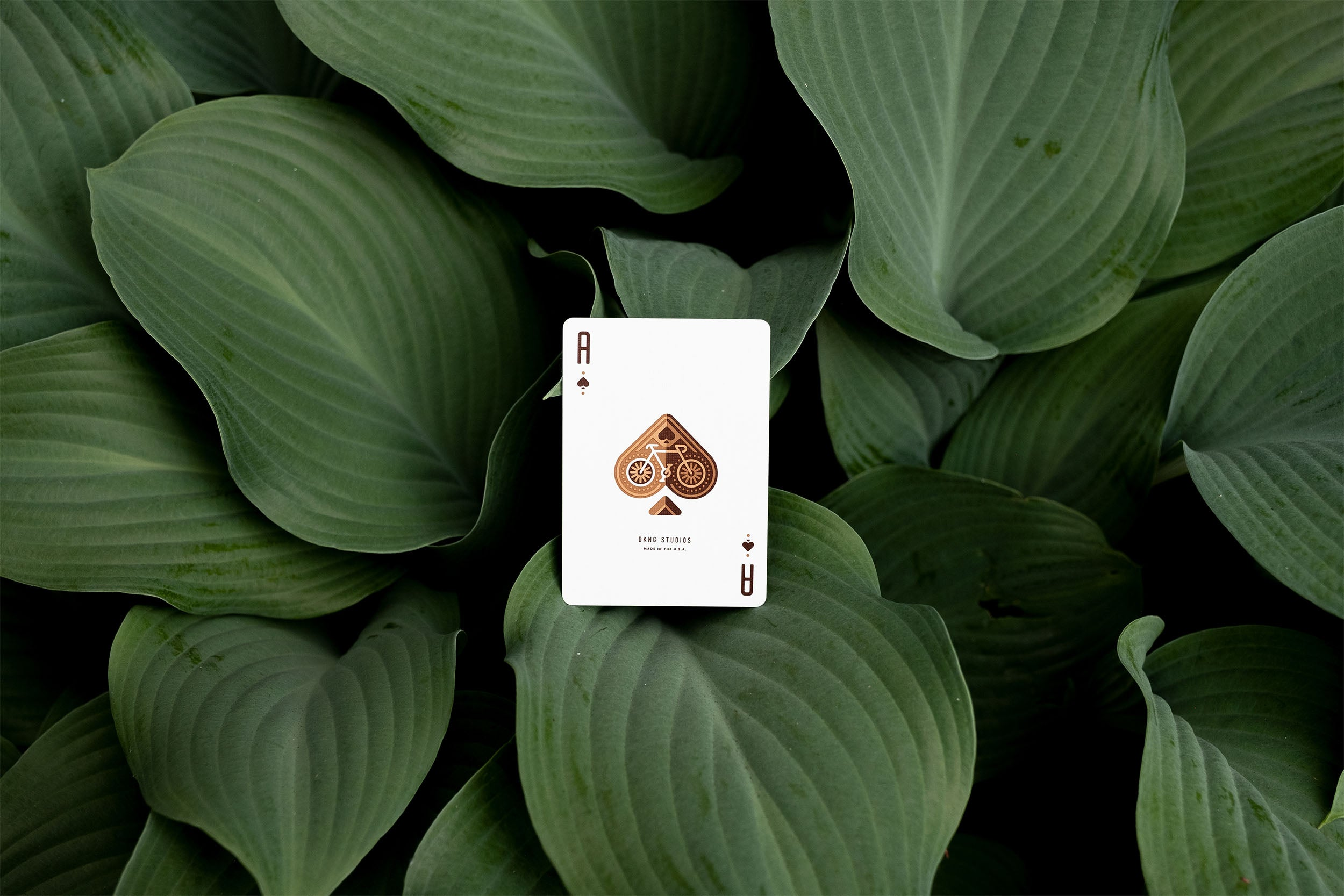 DKNG Playing Cards - Ace of Spades