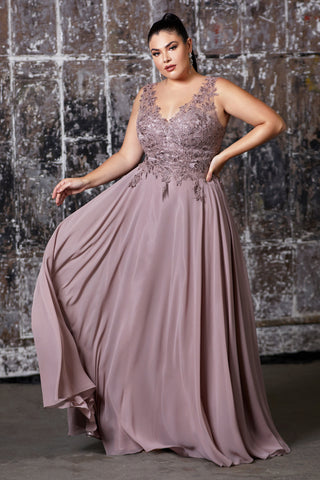 Curve Collection A-line chiffon gown with lace applique bodice and v-neckline.