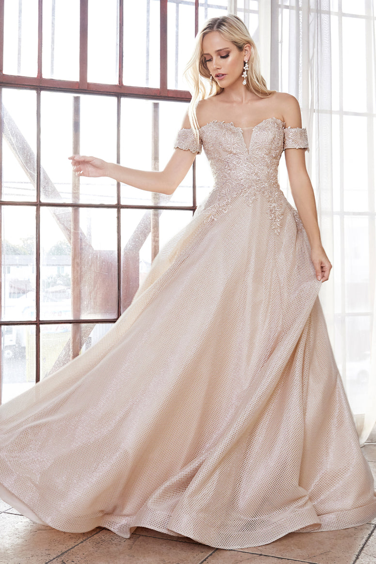Off the shoulder ball gown with lace applique bodice and netted jacquard skirt