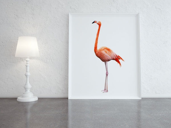 FLEMMING THE FLAMINGO ARTWORK - ATELIER LANE | interior design hong kong | designer homewares australia