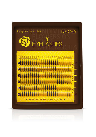 Mini Tray Y Eyelashes