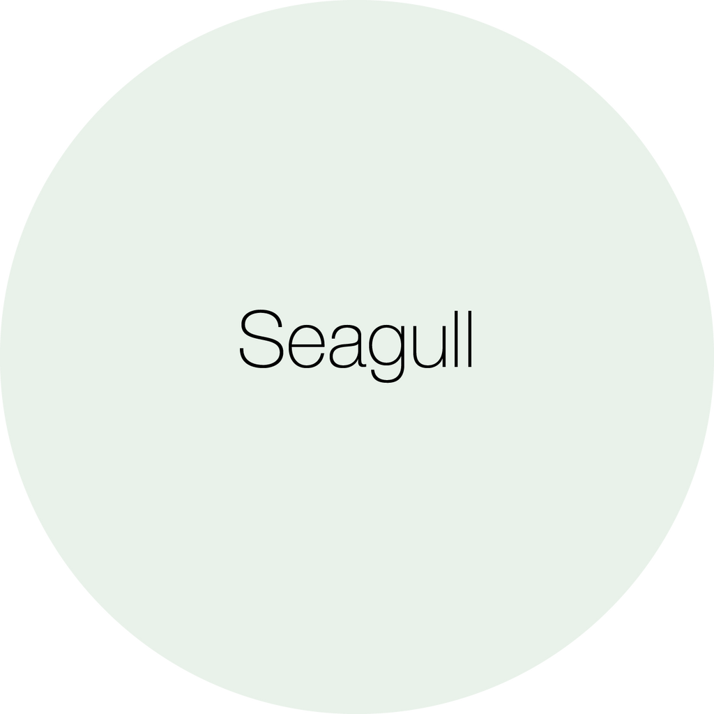 Earthborn Seagull