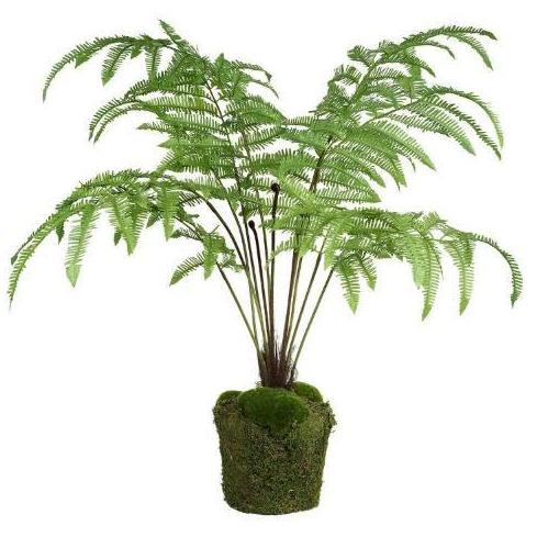 Large Faux Fern