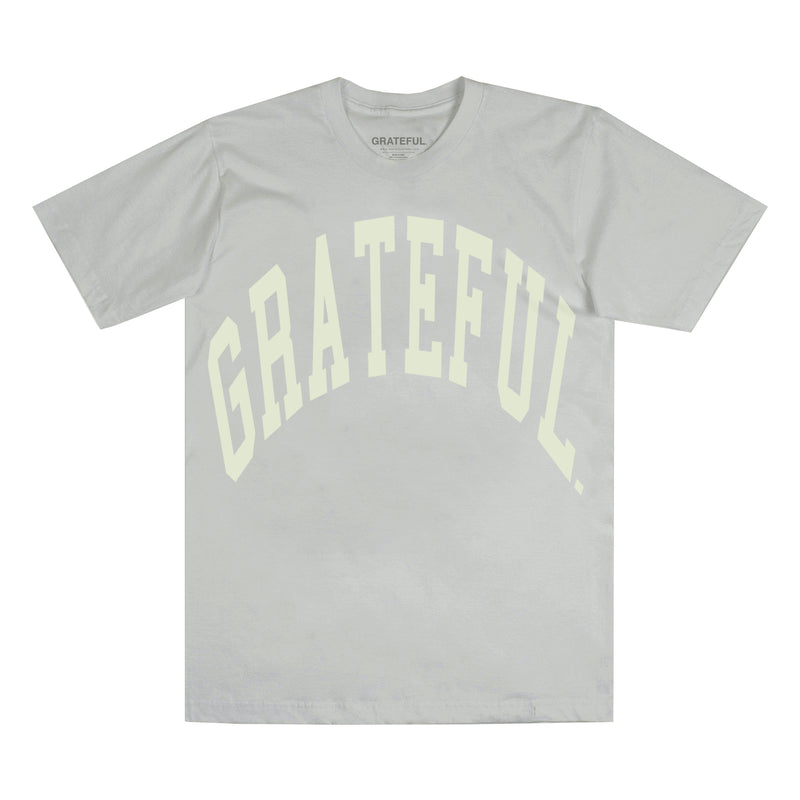 Arched Logo Tee Ice Grey (Oversized Print)