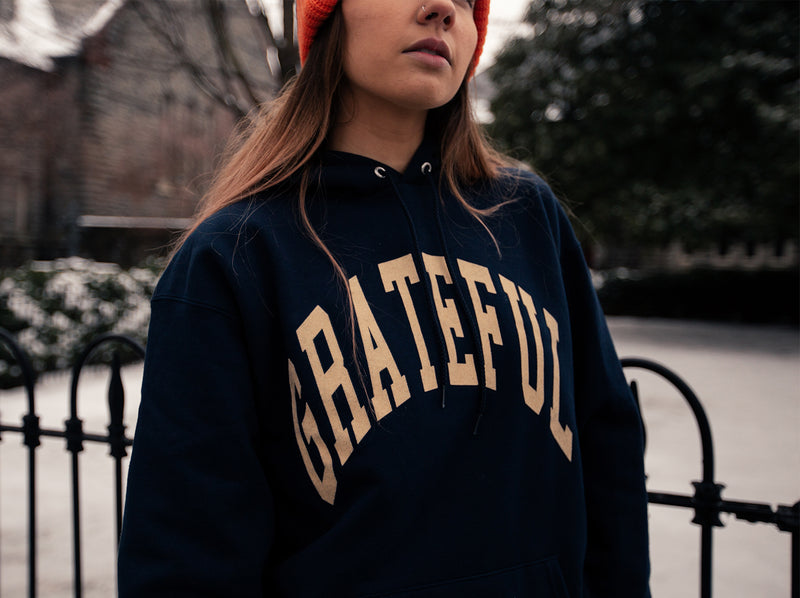 Arched Horizon Hoodie // Custom Cut Felt Logo [Navy]