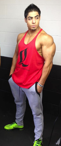 LoA Stringer Tank - RED