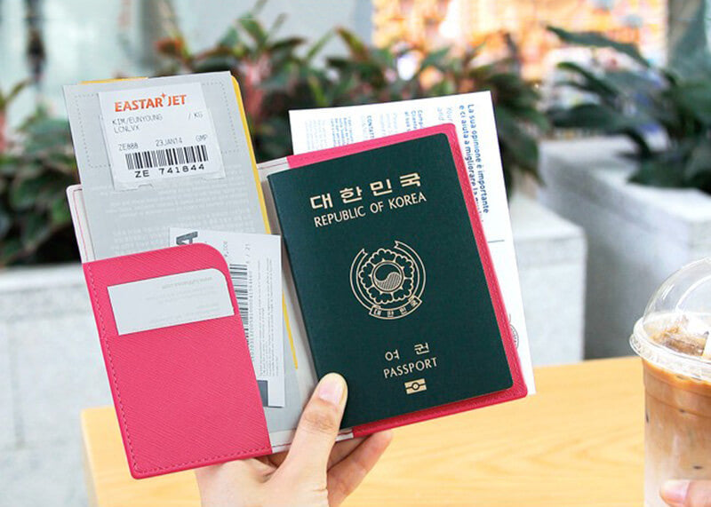Slim Passport Case v.2