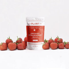 organic vegan strawberry protein powder