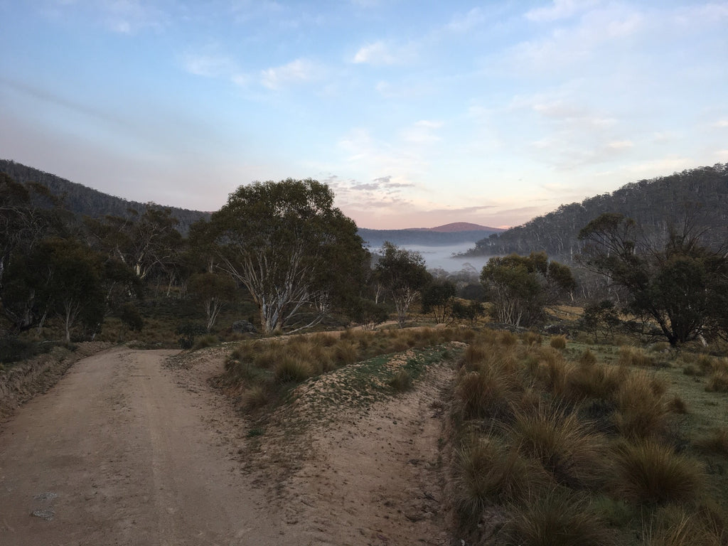 The road out of Canberra