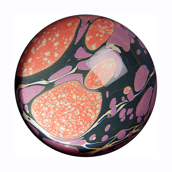 inq paperweight marbled paper ruby shell