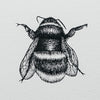 Bee Pen and Ink Print Illustration Nicole Heidaripour Detail