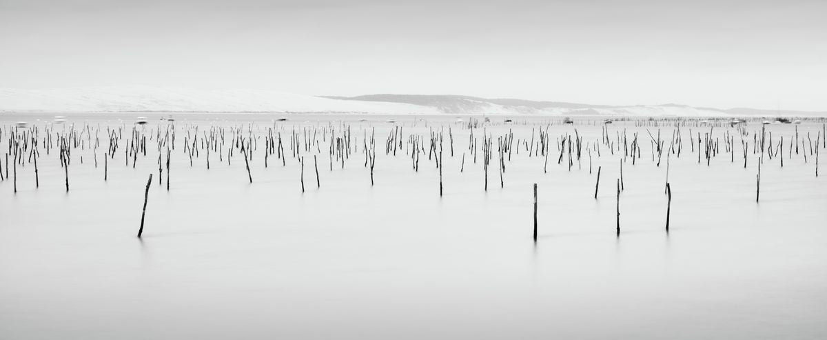 Barren Bordeaux seascape