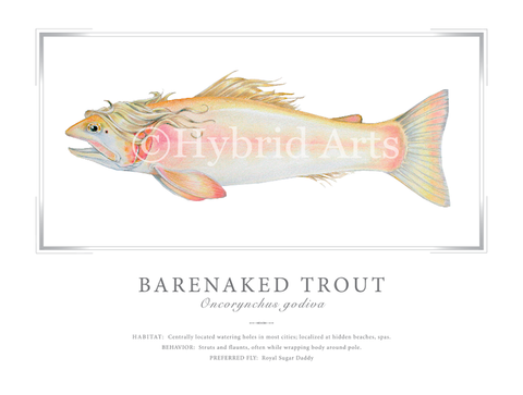 Barenaked Trout Print