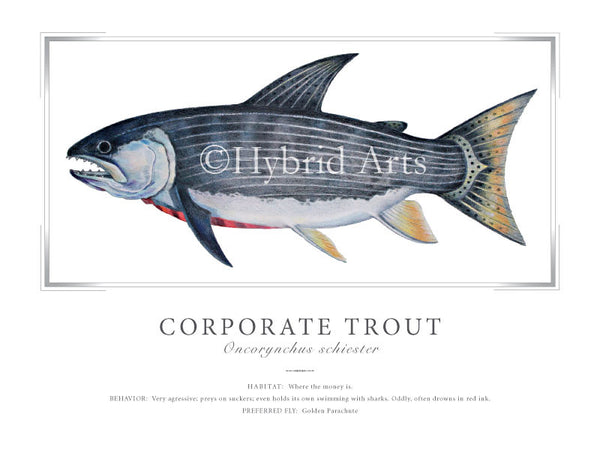 Corporate Trout Print