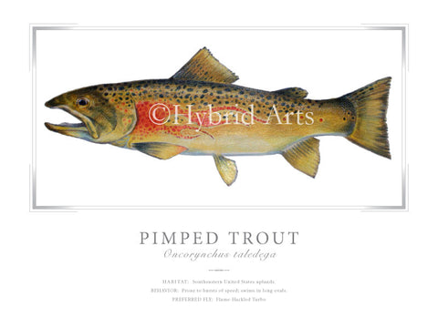 Pimped Trout