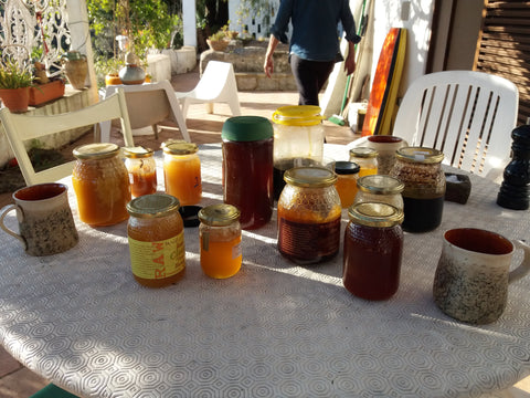 Raw Honey Tasting at Wild about Honey