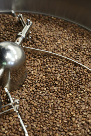 Freshly roasted coffee cooling from Animated Coffee