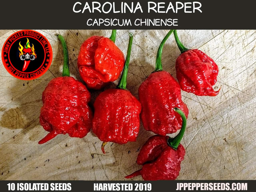 Carolina Reaper (Capsicum Chinense)-Super Hot- 10 Isolated Seeds