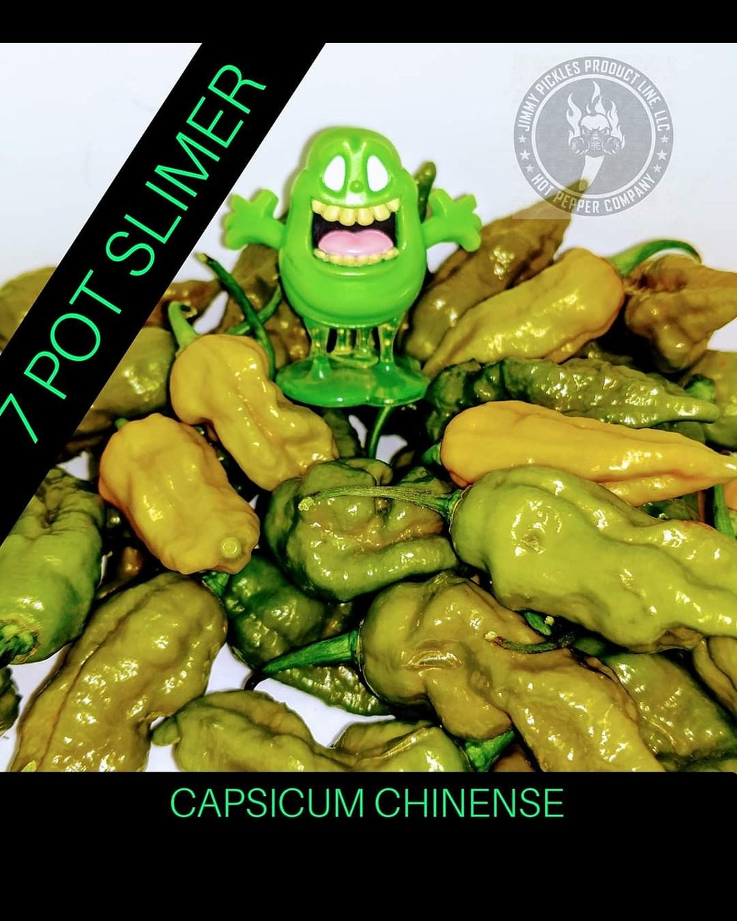 7 Pot Slimer (Capsicum Chinense)- Super Hot- 10 Isolated Seeds