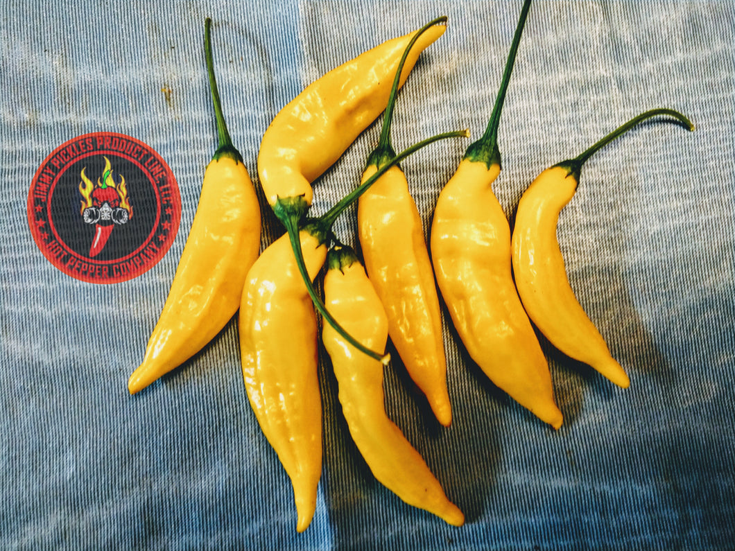 Aji Lemon Drop (Capsicum Baccatum) Medium Hot- 10 Isolated Seeds