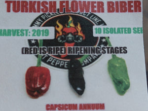 Turkish Flower Biber (Capsicum Annuum) Medium Hot- 10 Isolated Seeds