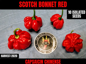 Scotch Bonnet Red (Capsicum Chinense) Hot-10 Isolated Seeds