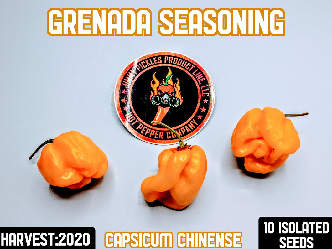 Grenada Seasoning (Capsicum Chinense) 10 Isolated Seeds