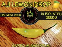 Load image into Gallery viewer, Aji Lemon Drop (Capsicum Baccatum) Medium Hot- 10 Isolated Seeds