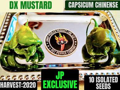 DX-Mustard (Capsicum Chinense) Super Hot- 10 Isolated Seeds