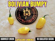 Load image into Gallery viewer, Bolivian Bumpy (Capsicum Chinense)-Low Heat- 10 Isolated Seeds