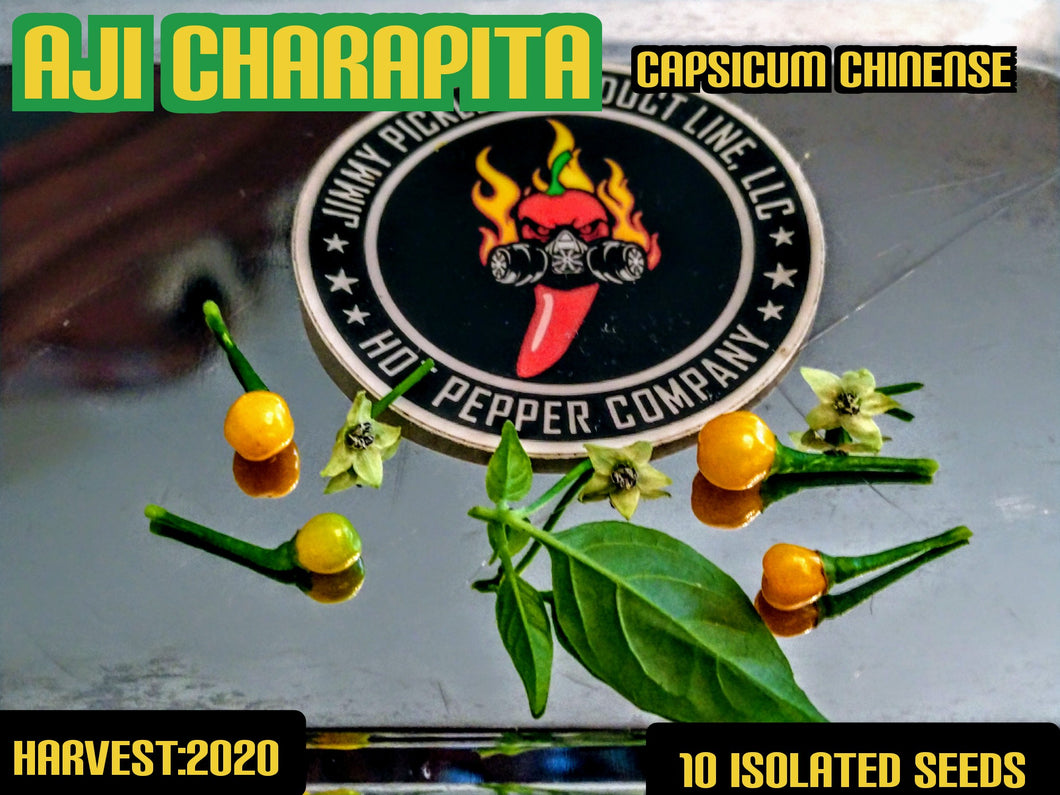 Aji Charapita (Capsicum Chinense) -Mid Hot-10 Isolated Seeds
