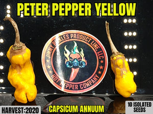 Peter Pepper Yellow (Capsicum Annuum) Mild-Hot- Heirloom- 10 Isolated Seeds