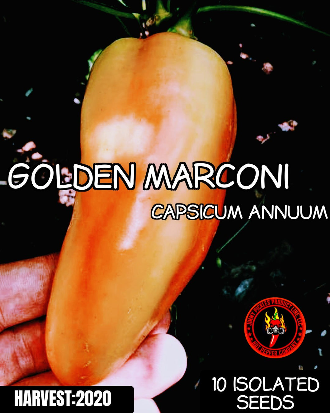 Golden Marconi (Capsicum Annuum) Sweet-10 Isolated Seeds