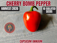 Load image into Gallery viewer, Cherry Bomb (Capsicum Annuum) Hot- 10 Isolated Seeds