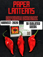 Load image into Gallery viewer, Paper Lantern (Capsicum Chinense) Hot- 10 Isolated Seeds