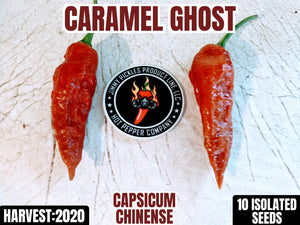 Caramel Ghost (Capsicum Chinense) Super Hot-10 Isolated Seeds