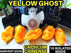 Yellow Ghost-Heirloom (Capsicum Chinense) Super-hot- 10 Isolated Seeds