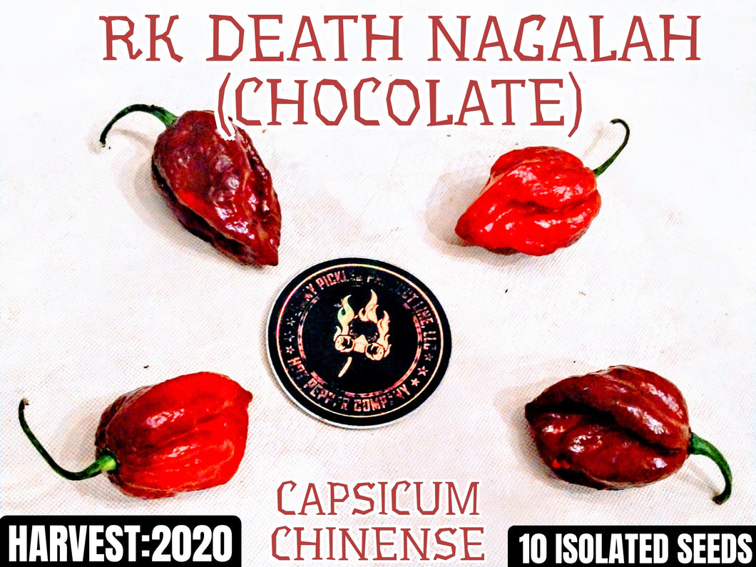 RK Death Nagalah -Chocolate (Capsicum Chinense) Super Hot-10 Isolated Seeds